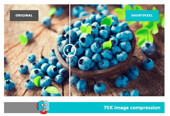 shortpixel compressione immagini